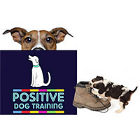 Positive Dog Training Ltd