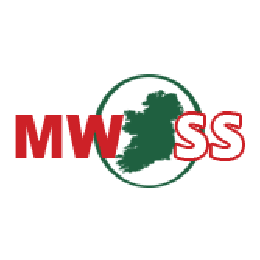 Mick Whelan Safety Services