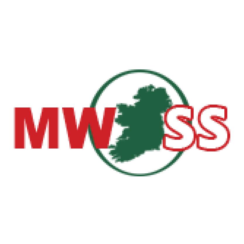 Mick Whelan Safety Services
