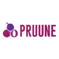 Pruune Consulting Ltd